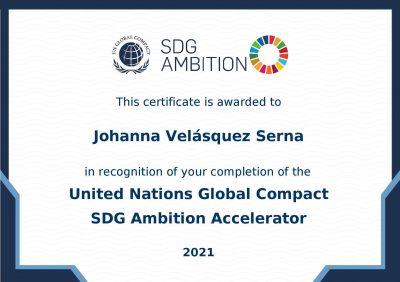 Certificate_SDG Ambition 2020-2021_Johanna-page-001